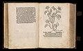 Gart der gesuntheit - Ortus sanitatis (Herbarius) MET DP358434.jpg
