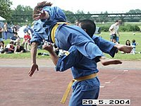 Vovinam demonstration in Germany.