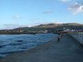 Girvan Harbour 04-11-13 36.jpeg