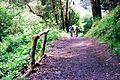 Glen Canyon Park 13 (5715235354).jpg