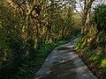 Glen Maye - geograph.org.uk - 773007.jpg