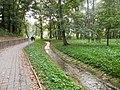 Glogow, Poland - panoramio (30).jpg