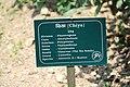 Godawari Botanical Garden (60).jpg