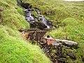 Gotcha^ - geograph.org.uk - 250060.jpg