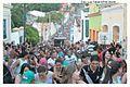 Grêmio Recreativo Escola de Samba D'Breck - Prévias Carnaval 2013 (8401131183).jpg