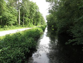 Great Dismal Swamp National Wildlife Refuge - Washington Ditch in the Great Dismal Swamp National Wildlife Refuge in 2016