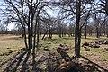 Green Elm Cemetery 2, Green Elm, Texas (8790588785).jpg