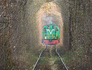 Tunnel of Love (railway) - Image: Green Mile Tunnel with train