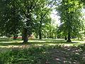 Gubin Waszkiewicz Park.JPG