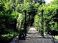 Hängebrücke am Wasserschloss Laer JEPG.JPG