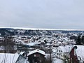 Hønefoss sett fra Arnegårdsbakken (vinter 2021).jpg