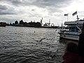Hamburg 2009 - panoramio (20).jpg