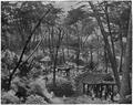 Hamilton - En Corée - p241.png