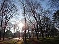 Hamm, Germany - panoramio (3812).jpg