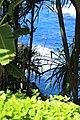 Hanalei, Kauai, Hawaii - panoramio (2).jpg