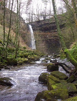 Hardraw Force - Hardraw Force, 2004