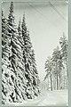 Harjutie, Finlandian risteys, Th. Sunell 1930s PK0096.jpg