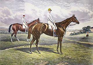 Harvester (horse) British-bred Thoroughbred racehorse