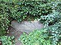 Haus Forsteck Diederichsenpark.jpg