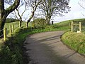Heading into the mountain field, Errigle - geograph.org.uk - 1052856.jpg