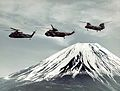 Helicopter Combat Support Squadron 7 (USN) helicopters in flight c1970.jpg