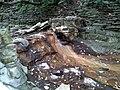 Hidden Falls - St Paul, MN - panoramio (41).jpg