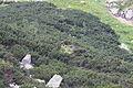 High Tatras (7713100714).jpg