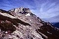 Hochstaufen-04-Weg durch Fels und Latschen-1987-gje.jpg