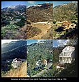 Hollywood Cove Evolution 1986-1992 by Michael E. Arth.jpg