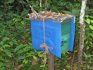Beekeeping in India - Honey box used by farmers in the Indian state of Kerala