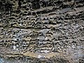 Honeycomb weathering (Black Hand Sandstone, Lower Mississippian; Picnic Rock, Black Hand Gorge, Ohio, USA) 1.jpg