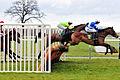 Horse racing (3309220797).jpg
