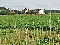 Houses beside the A1067 (Fakenham Road) - geograph.org.uk - 899754.jpg