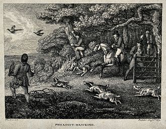 Samuel Howitt - Pheasant hawking, 1799