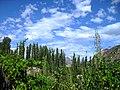 Hunza Pakistan (Olympus 720 SW) - panoramio (1).jpg