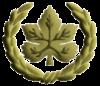 IDF Sergeant Major (RASAR) 1948.png