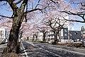 Ibaraki Prefectural Route-293 01.jpg