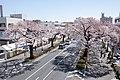 Ibaraki Prefectural Route-293 14.jpg