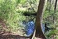 Ichetucknee Springs State Park Blue Hole Spring 1.jpg
