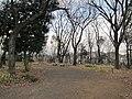 Ida-yama forest , Kawasaki - panoramio - Kaz Ish (11).jpg