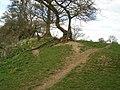 Ilbury camp - panoramio.jpg