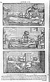 "Illustrations from Avicenna, ""Liber canonis ..."" Wellcome L0000150.jpg"