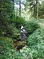 Im Steintal oberhalb von Lautenbach (Gernsbach).jpg