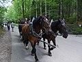 In carrozza verso il castello di Neuschwanstein - panoramio.jpg