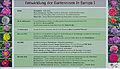 Infoschild Entwicklung der Gartenrose in Europa I.jpg