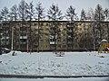 Irkutsk. Akademgorodok. February 2013 - panoramio (12).jpg