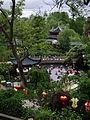 Jardin chinois Pairi Daiza.JPG