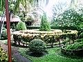 Jardin del Café Chinandega.JPG