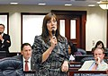 Jeanette Núñez debates a measure under consideration on the House floor.jpg
