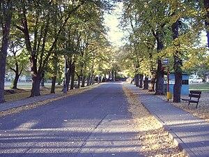 Jevany - Alley on square in Jevany